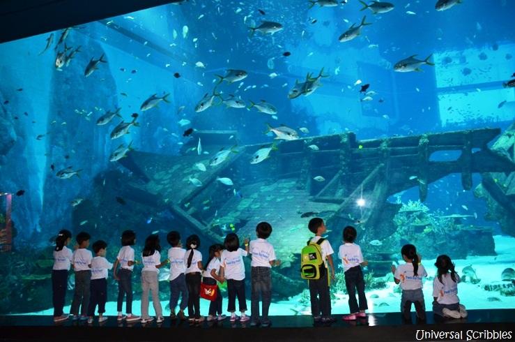 World largest Aquarium