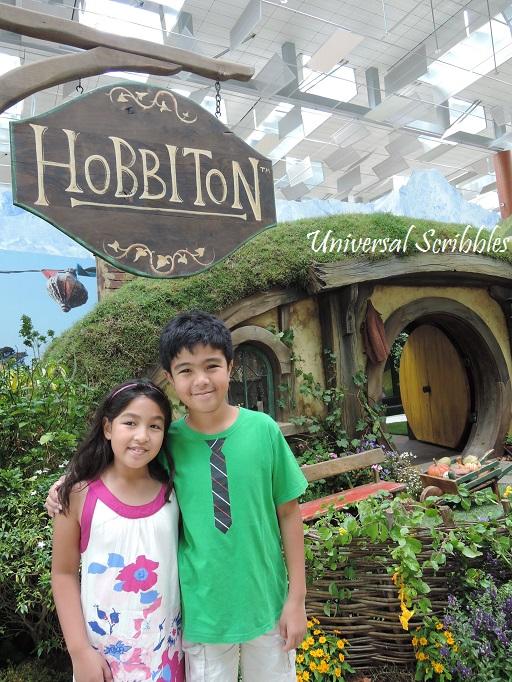 Airport Hobbiton